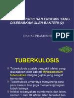 Tuberkulosis-Pes-Kusta.pdf