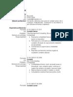 Model_de_CV_contabil_senior.doc