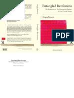 D. Petrescu - Entangled Revolutions