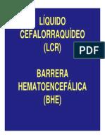 acv citotoxicidad