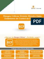 Libro Riesgos Críticos validado  DMH.pdf