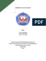 TUGAS ALI MURNI (A1C2 11 084).docx