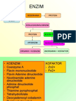 kuliah-3-enzim3