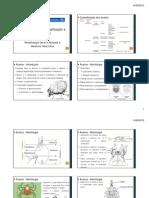 Parasito UFMT Acari - Importancia e Classificao