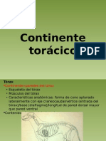 Pwpoint Continente Toracico (prof Vera, UBA)