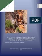 2013-10-29 Raport Mediu Specific