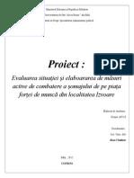Proiect-Somajul in s Izvoare (1)