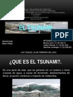 desastres naturales El Tsunami