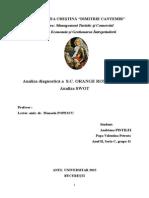 Proiect Economia Si Gestionarea Intreprinderii