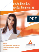 SEMI_Estrutura_Analise_Demonstr_Financ_05.pdf