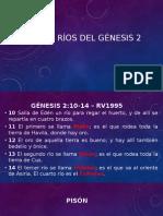 Cuatro Rios Del Genesis