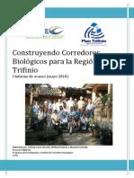 Informe Corredores Trifinio