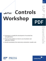 SAP Controls - Workshops