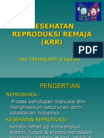 KRR INA