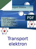 Transport Elektron