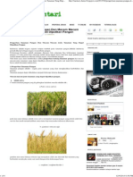 Kategori Tanaman Pangan.pdf