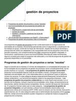 Programa Gestion de Proyectos Resumen
