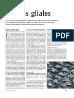 Articulo_2_Celulas_gliales.pdf