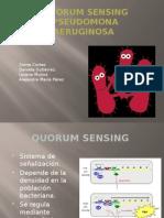 QUORUM SENSING PSEUDOMONA AERUGINOSA.pptx