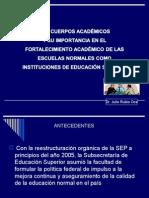 Taller Cuerpos Academicos Dr Julio Rubio
