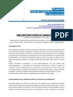 Monografia Neurociencias Lorena.arakelian