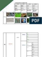 Clasificación Animal 2015