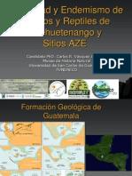 Diversidad y Endemismo de Anfibios y Reptiles de (1)