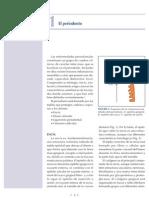 a2 El Periodonto(1)