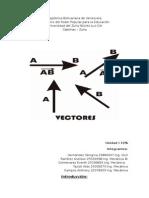 vectores fisica