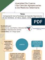 Fisiologia Comparativa del aparato reproductor de la hembra