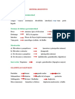 Clase II - 4(Digestivo) (1)