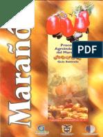 Proceso Agroindustrial Del Marañon