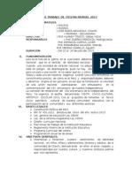 Plan de Trabajo de Fiestas Patrias 2013