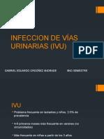 Infeccion de Vías Urinarias (Ivu)
