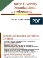 Diversity and Organizational Development