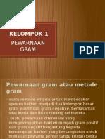 pewarnaan gram, gram positif, gram negatif, identifikasi bakteri