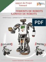 Rapport Convoi-Robot