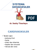 SYSTEMA CARDIOVASKULER