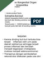 Kelainan Kogenital Organ Uropoetika
