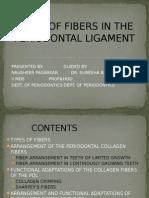 collagen.pptx