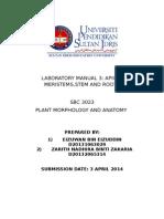Lab 3 Report Plant ANATOMY