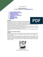 (origen) comercio-electronico.doc