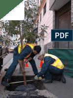PartD-TechnicalGuidelines trees.pdf