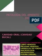 Patología Del Aparato Digestivo Parte
