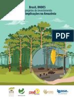 Brasil, BNDES e projetos de investimento com implicações na Amazônia