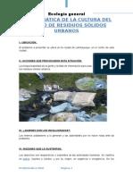 PROBLEMÁTICA DE LA CULTURA DEL MANEJO DE RESIDUOS SÓLIDOS URBANOS.docx