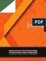 1raSituacionPrimaria_IV_V_Ciclo_C.pdf