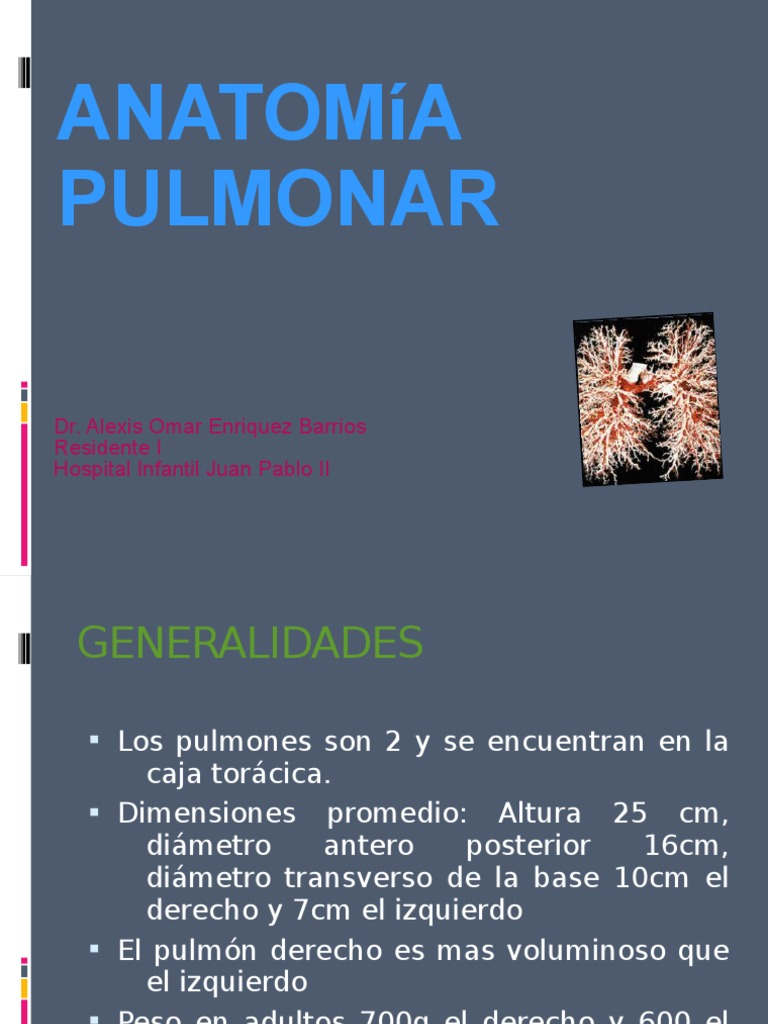 Clase de Radiologia Segmentos Pulmonares