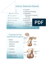 2402 Ch 17 Endocrine system (Part 2) PPT.pdf