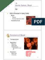 2402 Ch 18 cardiovascular system (Part 1) PPT.pdf